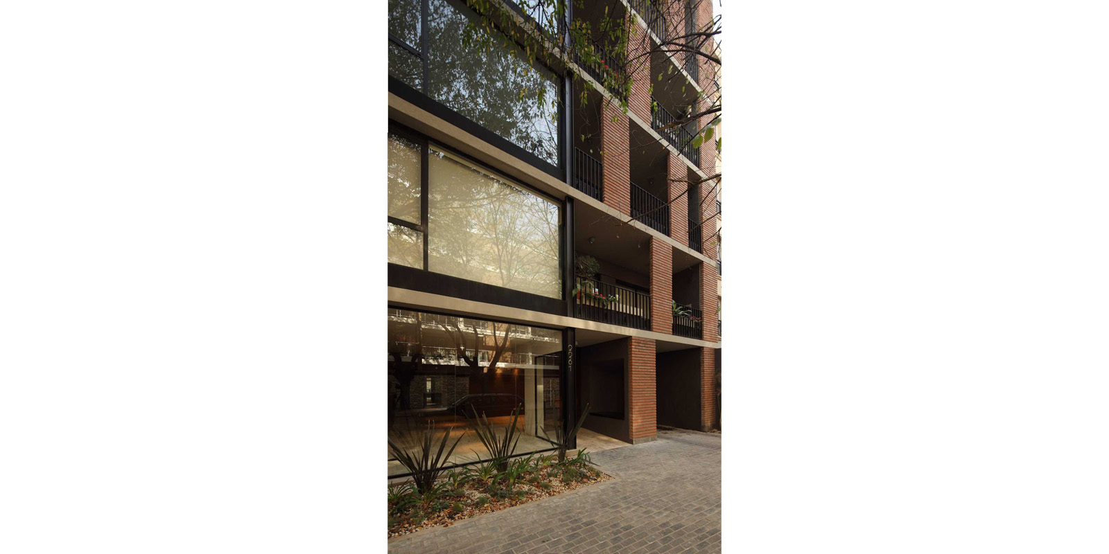 ProyectoC_Arquitectos_Portfolio_02_Vergara