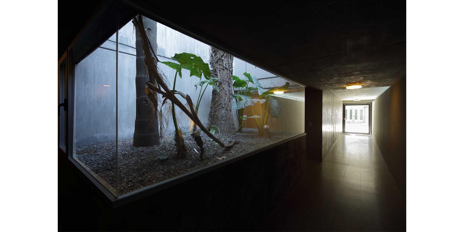 ProyectoC_Arquitectos_Portfolio_12_Washington