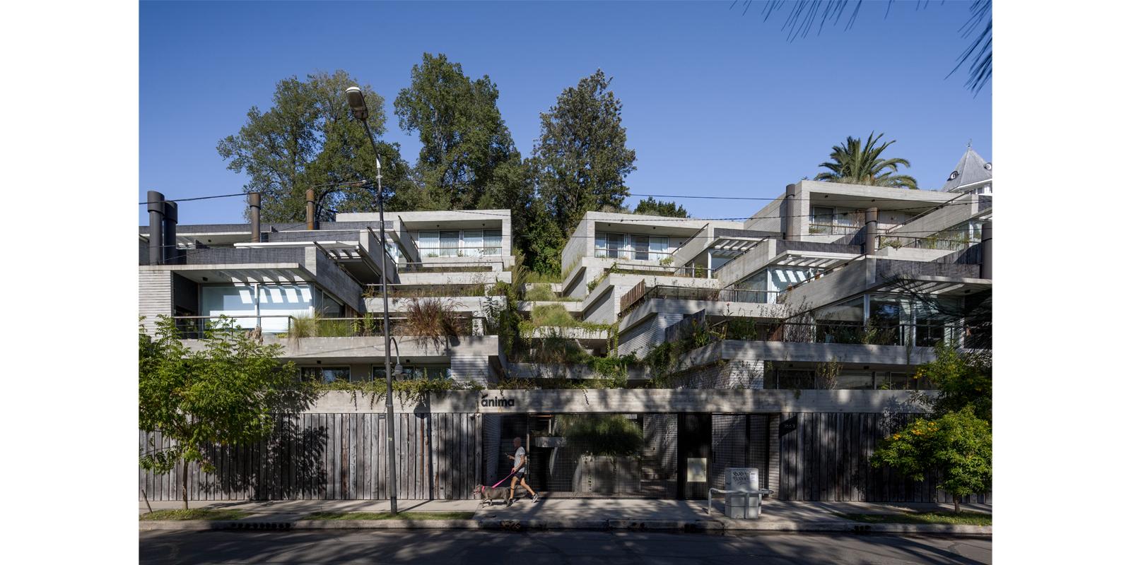 ProyectoC_Arquitectos_Portfolio_01_Anima