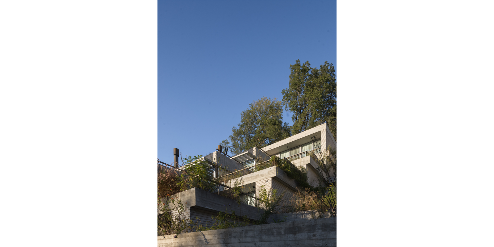 ProyectoC_Arquitectos_Portfolio_06_Anima